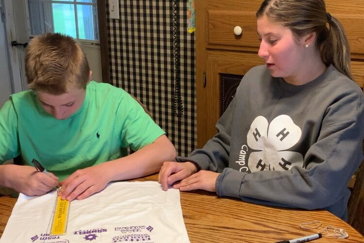 Hannah Weymouth and her brother Drew created a mask tutorial as part of this year's 4-H Cyber Challenge.