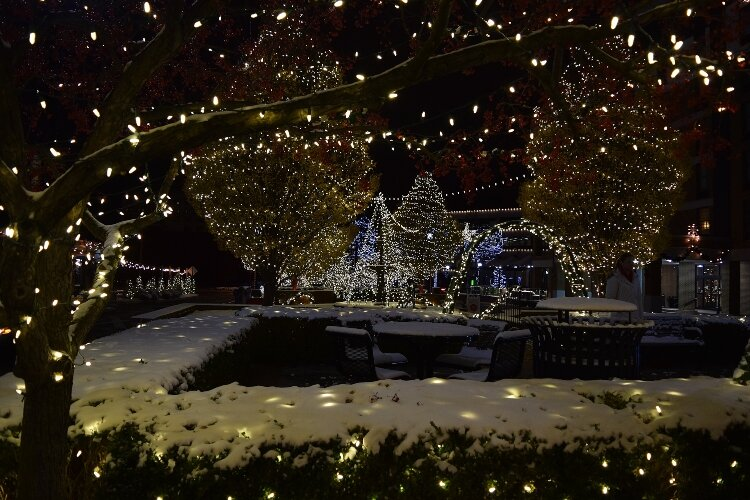 Snow-covered lights glowing among the bushes and trees throughout the esplanade near the Heritage Center have become inviting to Downtown Springfield visitors.